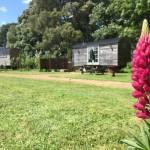 Photo of shepherd huts