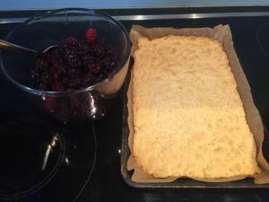 Photo of baked base for mulberry slices