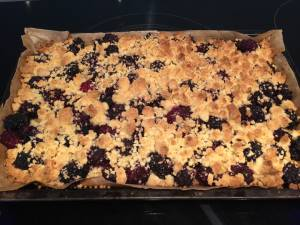 Photo of baked mulberry slice